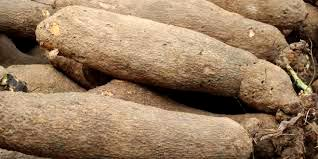 Man bags 6 months in jail for stealing yam