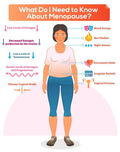 The menopause has always been the bane of the average middle-aged woman. Hot flushes, weight gain, and diminished sex drive are all well-known symptoms of the dreaded menopause.