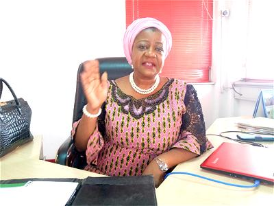 We'll find sponsors of Boko Haram soon ― President's aide, Onochie