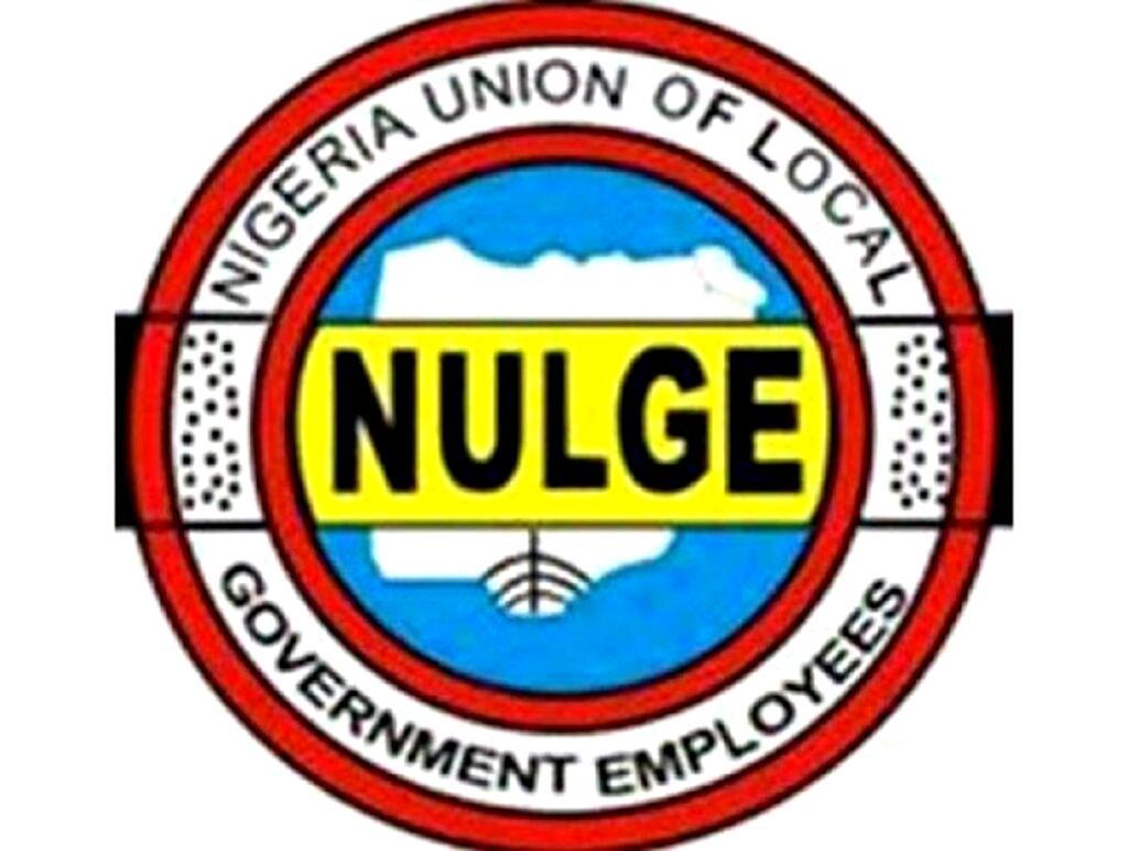 Oyo NULGE