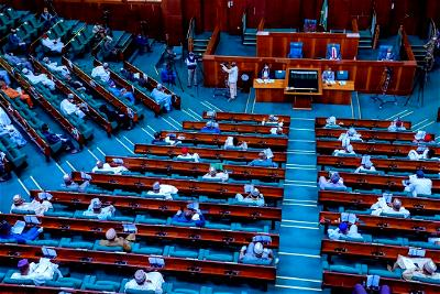 Reps pass Bill to compel President, govs to appoint disabled persons as Ministers, commissioners
