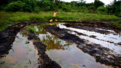 Niger Delta polluted environment facing systematic neglect ― Nimmo Bassey