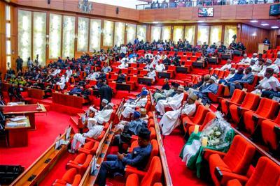 Insecurity: Nigeria under siege, Senate