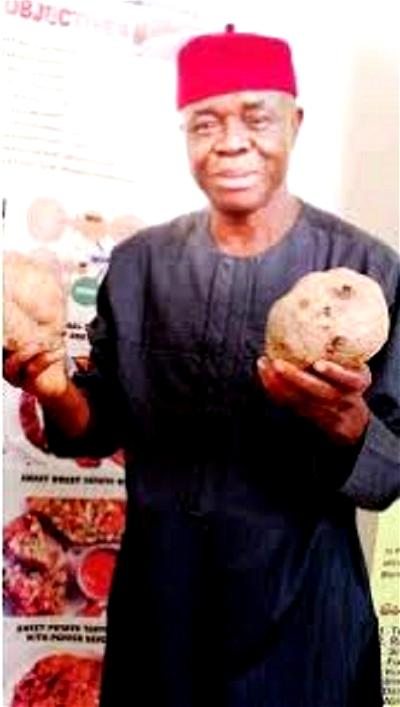World Food Safety Day 2020: POFAN President tasks farmers on use of chemicals