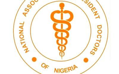 Nigeria's Oluwadare wins 2020 Global Animal Welfare Award