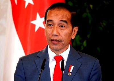 Joko Widodo predicts COVID-19 will reach peak August-September in Indonesia