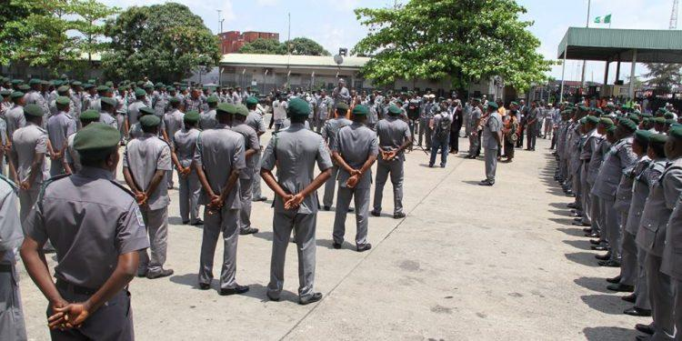 Customs impound donkey hides, charcoal worth N644m