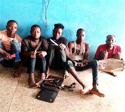 Police arrest five robbery suspects terrorising Ogun community
