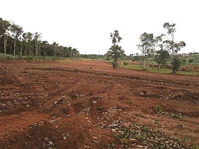 How land tussle tore apart Delta Kingdom