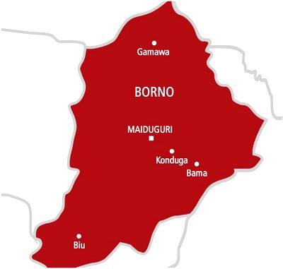 Borno teachers