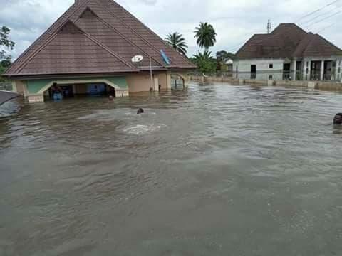 NiMet predicts flash flood in Lagos, Delta, Enugu, Kaduna, 30 other states