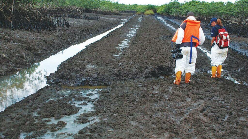 Ogoni Clean-up