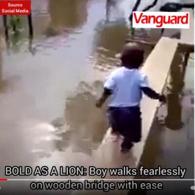 BOLD AS A LION: Boy fearlessly walks on narrow wooden bridge (VIDEO)