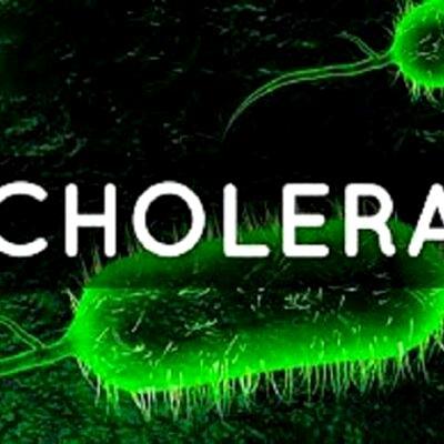 Partnering LAWMA, others on sanitation will reduce cholera spread— Latter Day Saints