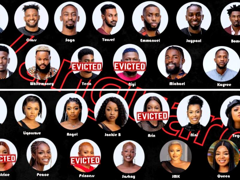 Beyond the Obscenity: The other side of Big Brother Naija